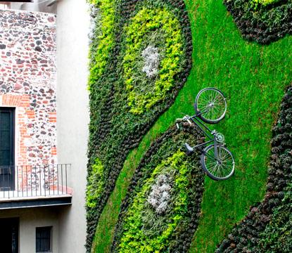 Que es un jard n vertical vertical gardens for Que es un jardin vertical