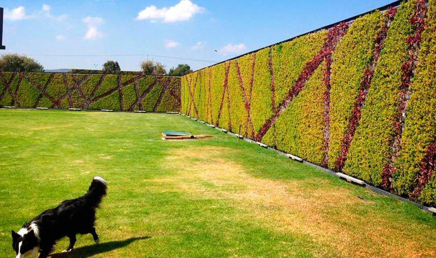 verticalgreen vertical gardens